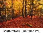 beautiful vintage autumn... | Shutterstock . vector #1007066191