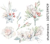 handpainted watercolor flowers... | Shutterstock . vector #1007159929