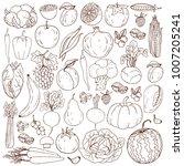 organic farm illustration.... | Shutterstock .eps vector #1007205241