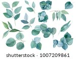 set of green elements  branches ... | Shutterstock . vector #1007209861