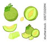 melon fruit set | Shutterstock .eps vector #1007232094
