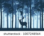 blue coniferous forest with a... | Shutterstock .eps vector #1007248564