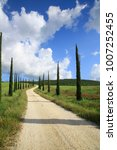cupressus avenue with path ... | Shutterstock . vector #1007252455