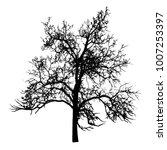 tree silhouette vector clip art ... | Shutterstock .eps vector #1007253397