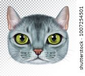 vector illustration portrait of ... | Shutterstock .eps vector #1007254501