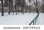 park and snowfall in winter | Shutterstock . vector #1007259121
