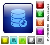 pin database icons in rounded... | Shutterstock .eps vector #1007381281