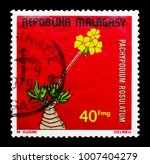 Small photo of MOSCOW, RUSSIA - JANUARY 2, 2018: A stamp printed in Madagascar shows Pachypodium rosulatum, Plants serie, circa 1975