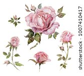 Stock photo pink rose flower on a twig floral set flowers buds twigs with thorns and leaves isolated on 1007410417