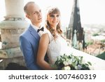 gorgeous wedding couple in the... | Shutterstock . vector #1007460319