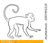 monkey zodiac sign. ape chinese ... | Shutterstock .eps vector #1007492215