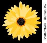 gerbera daisy. vector flower... | Shutterstock .eps vector #1007508157