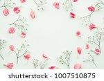 petal flower on white... | Shutterstock . vector #1007510875
