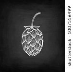 chalk sketch of hops on... | Shutterstock .eps vector #1007556499