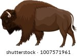 Vector Brown Zubr Buffalo Bison