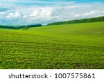 summer blue sky. nature... | Shutterstock . vector #1007575861