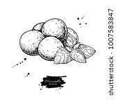 mozzarella cheese vector... | Shutterstock .eps vector #1007583847