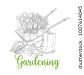 hand drawn gardening banner....   Shutterstock .eps vector #1007614045