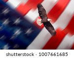 Bald Eagle Flying With Blurred...