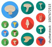 poisonous and edible mushroom... | Shutterstock .eps vector #1007672515