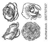 flower rose set isolated on... | Shutterstock .eps vector #1007707537