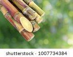 Small photo of Sugar cane, Cane, Sugarcane piece fresh, sugar cane on green nature bokeh background, Sugarcane agriculture