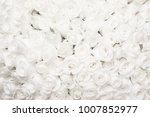 Stock photo white rose background 1007852977