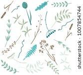 vector set of leaves  twigs ... | Shutterstock .eps vector #1007854744