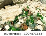 smashed glass bottles dumped as ... | Shutterstock . vector #1007871865