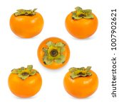persimmon  plural persimmons ... | Shutterstock . vector #1007902621