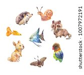 collection of childish stickers ... | Shutterstock . vector #1007972191