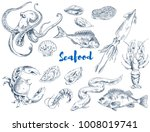 exotic seafood such as huge... | Shutterstock .eps vector #1008019741