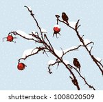 sprigs of wild roses on a... | Shutterstock .eps vector #1008020509