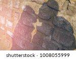 shade silhouette of beautiful...   Shutterstock . vector #1008055999