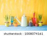 springtime gardening  young... | Shutterstock . vector #1008074161