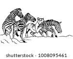 lioness hunting zebra...   Shutterstock .eps vector #1008095461