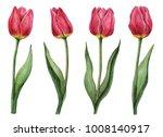 watercolor set of tulips  hand... | Shutterstock . vector #1008140917