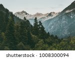 Coniferous Forest And Mountain...