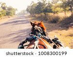 horse rider's eye view on the... | Shutterstock . vector #1008300199