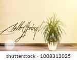 beautiful flowerpot  on wall... | Shutterstock . vector #1008312025