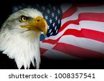 american symbol   usa flag with ... | Shutterstock . vector #1008357541