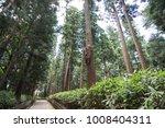 huge tree in a park  japanese... | Shutterstock . vector #1008404311