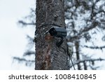 cctv camera on a tree in winter ... | Shutterstock . vector #1008410845