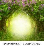fantasy  background . magic... | Shutterstock . vector #1008439789