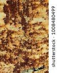 texture of rusty iron  cracked... | Shutterstock . vector #1008480499