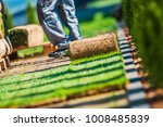 grass turfs installation work.... | Shutterstock . vector #1008485839