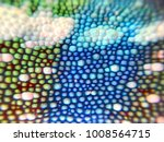 panther chameleon scales closeup | Shutterstock . vector #1008564715