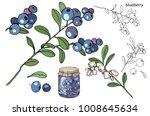 berries and jam    Shutterstock .eps vector #1008645634
