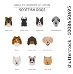 dogs by country of origin.... | Shutterstock .eps vector #1008650695