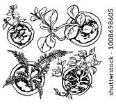 vector set of house plants in... | Shutterstock .eps vector #1008698605